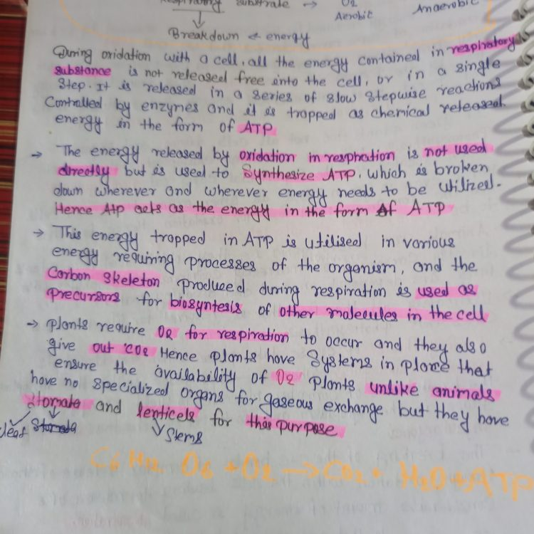 Respiration in Plant Short Notes Class 11 Biology PDF